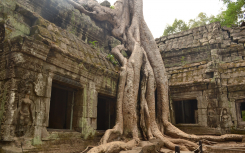 Храм Ангкор Ват в Камбодже