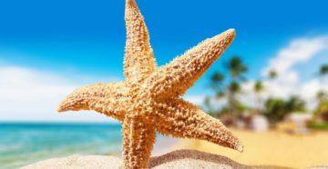 Бай Раш Вем - пляж с морскими звездами