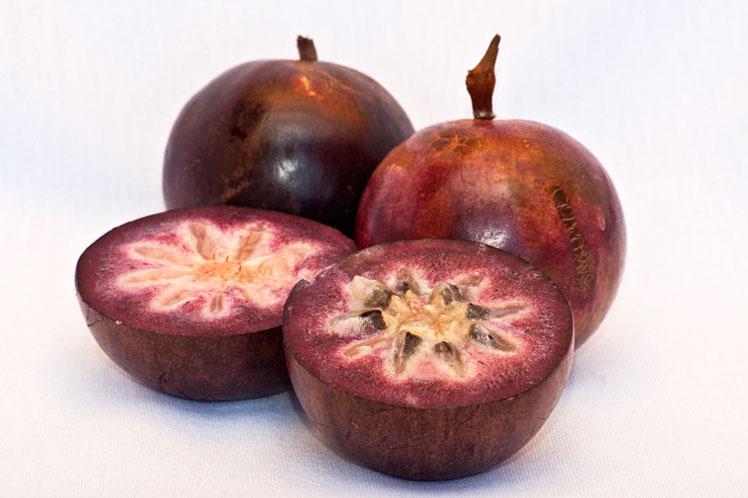 Хризофиллум (звёздчатое яблоко) во Вьетнаме