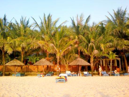 Пляж отеля Hoa Binh Hotel 4*