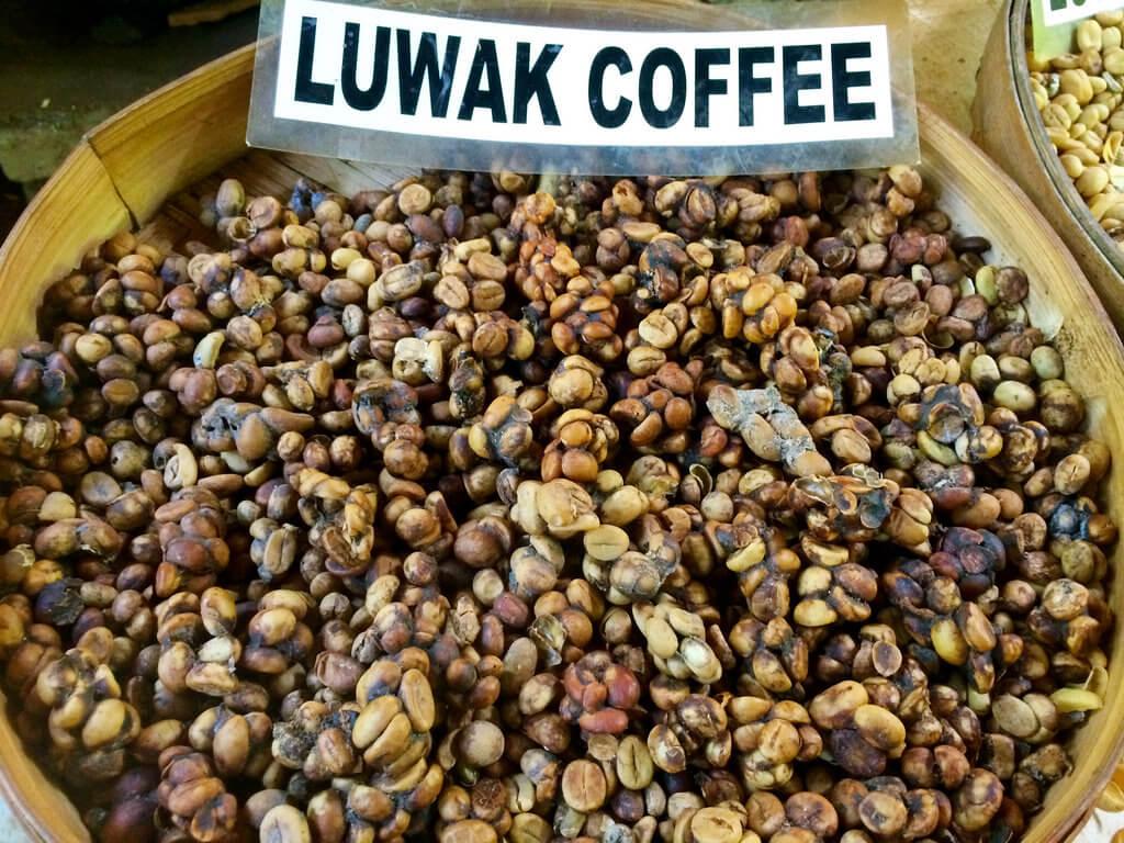 Кофе Лювак во Вьетнаме