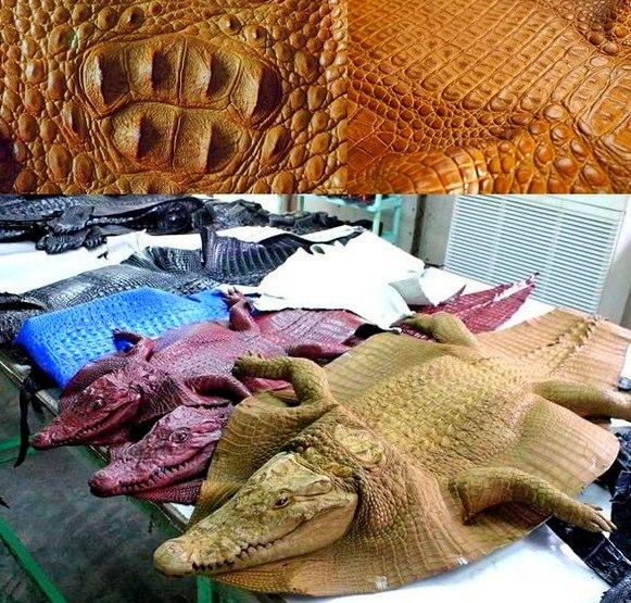 Изделия из крокодиловой кожи во Вьетнаме